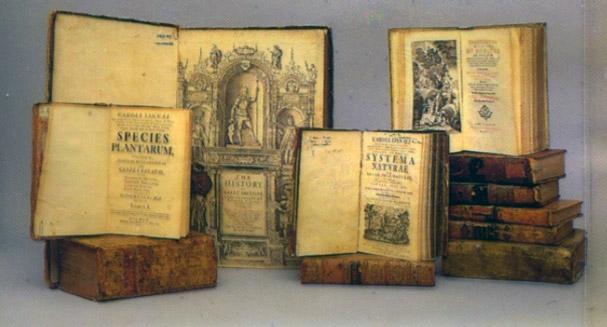 Кратка история за възникването на архивите